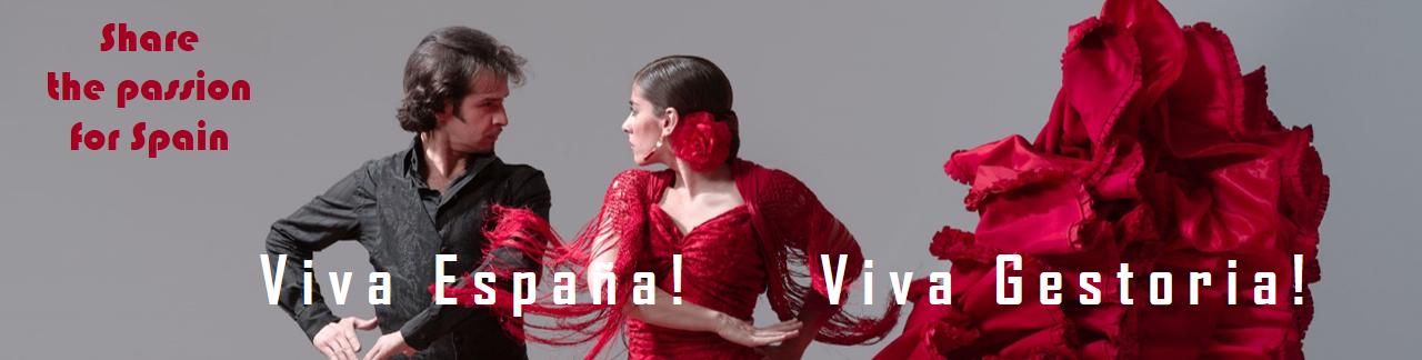 Viva Gestoria | Nederlandse koopbegeleiding Spanje